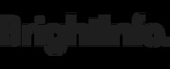 BrightInfo logo