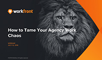 How to Tame Your Agency Work Chaos