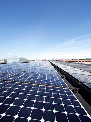 Commercial solar panel investment