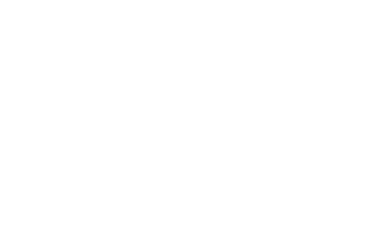 Savannah Chamber Of Commerce and Visit Savannah logo