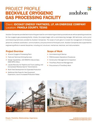 Project: Enbridge Beckville Cryogenic Processing Plant