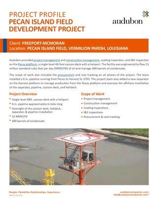 Project: Pecos Platform