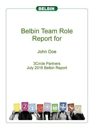 Sample -- Individual Belbin Report