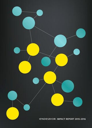 Endeavor Impact Report 2015–2016