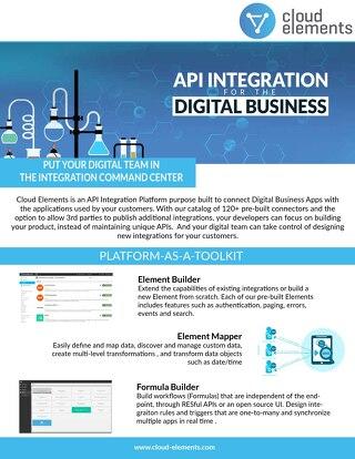 API Integration for the Digital Business
