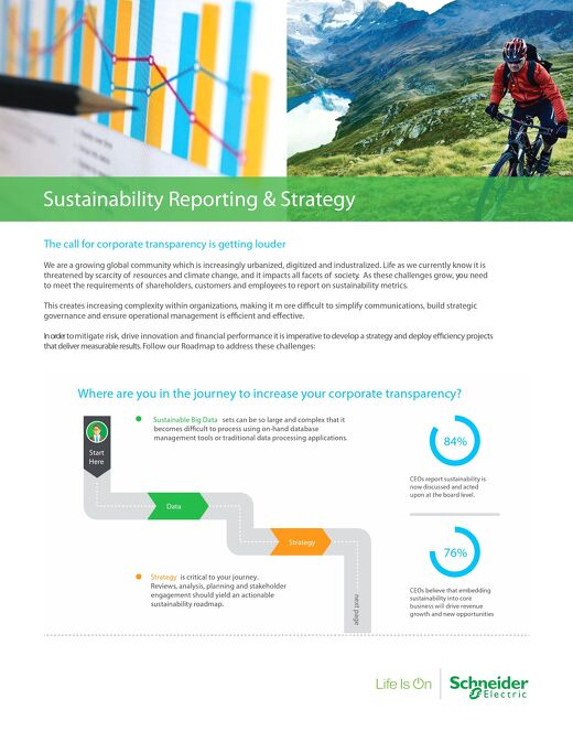 Sustainability Reporting Strategy Roadmap