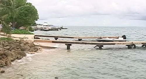 Cocos Island business shut down because of roaches