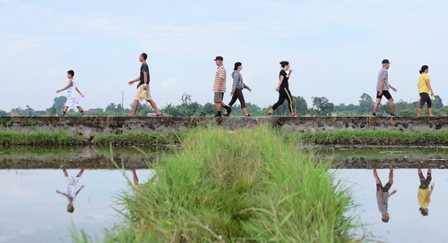 Mengenal Ekowisata Subak Sembung dan Peran ASTRA di Banjar Pulugambang