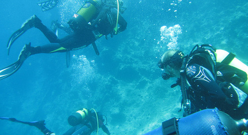 Scuba diving in Indonesia: Where to get your diving license in Jakarta