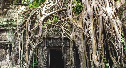 Unique places to travel in Asia: Add these 5 stunning UNESCO World Heritage Sites to your bucket list
