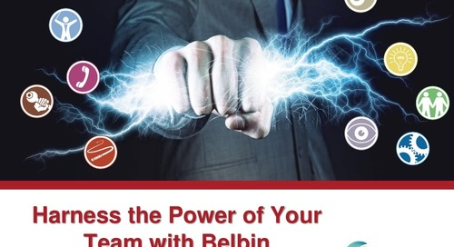 Harness the Power of Your Team with Belbin