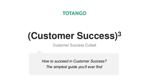 Customer Success Cubed - The Simplest Guide you will ever Find