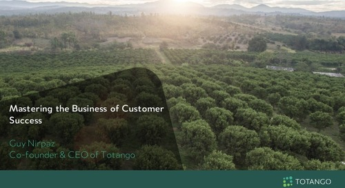Mastering the Business of Customer Success