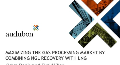 Maximizing the Gas Processing Market by Combining NGL Recovery with LNG