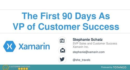 90-DAY PLAN FOR THE FIRST VP OF CUSTOMER SUCCESS