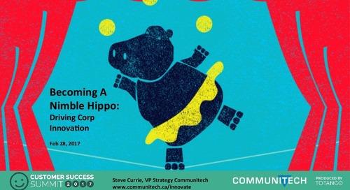 Creating a Nimble Hippo Company