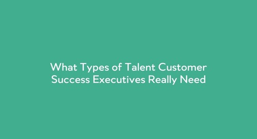 What Types of Talent Customer Success Executives Really Need