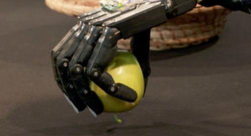Roboterhand lernt durch eigenes Erkunden