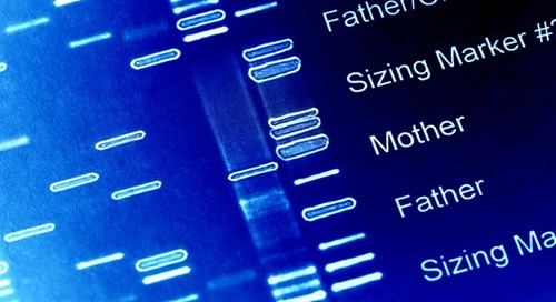 Research sheds light on genetic factors involved in autoimmune diseases
