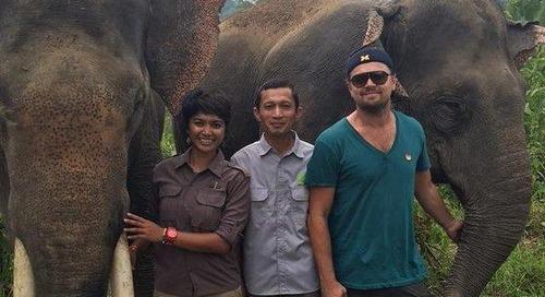 Selain Bali, Inilah Delapan Destinasi Lokal Favorit Artis Dunia
