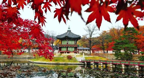 Fakta Unik & Menarik tentang Korea Selatan