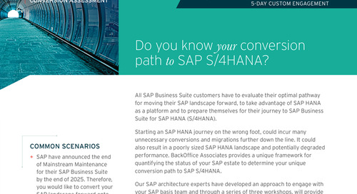 SAP S/4HANA Conversion Assessment