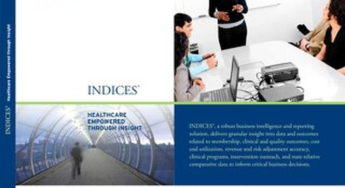INDICES Business Intelligence and Reporting