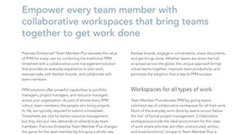 Planview Enterprise Team Member Plus