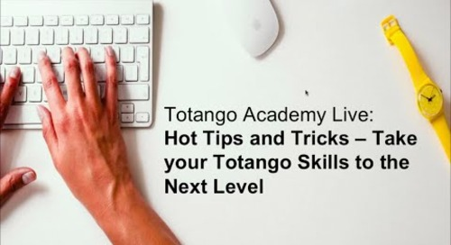 Hot Tips and Tricks - Take your Totango Skills to the Next Level