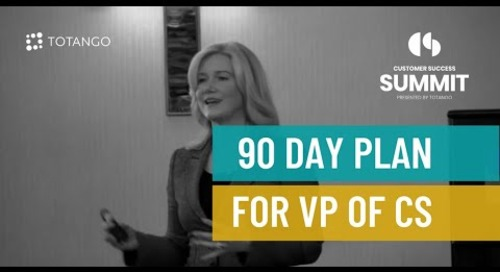 90 Day Plan for the First VP of Customer Success - Customer Success Summit 2015