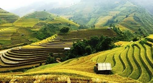 Bali Hotels: Traveler's choice Top 10 Best Hotels in Bali