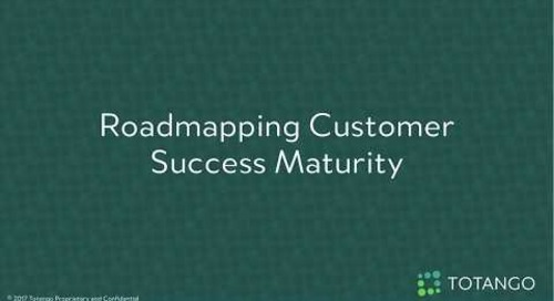 Roadmapping Customer Success Maturity