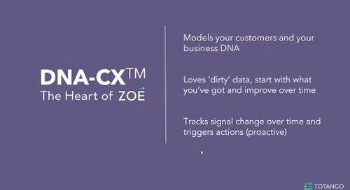 Introducing Totango DNA-CX - The Heart of Zoe
