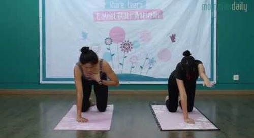 How to: Pilates Pregnancy Part2