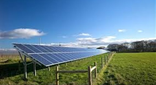 ICYMI: Solar Farms - Germinating Power and Growing Communities