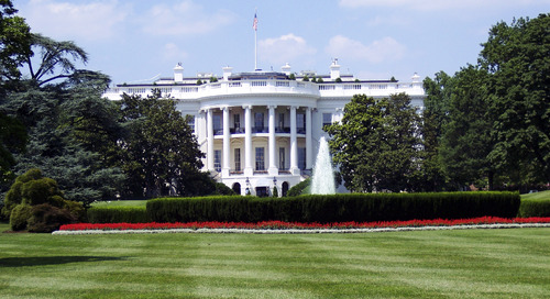 Leadership in Science, Technology, and Innovation: Topcoder Projects on the White House Impact Report
