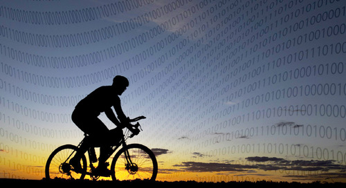 "Data ""Fitness"" is Key for Long-Term Corporate Success"