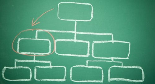 Should Customer Success Report to the CEO?