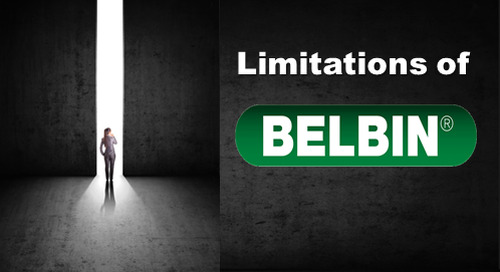The Limitations of Belbin