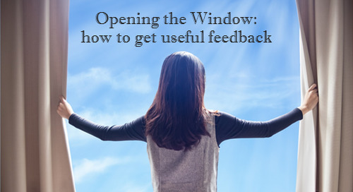 Opening The Window: How To Get Useful Feedback