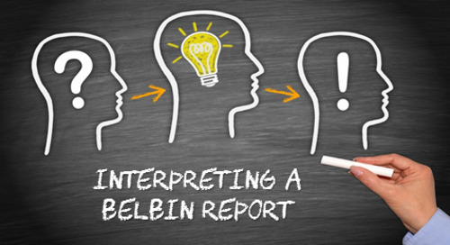 Interpreting Your Belbin Report