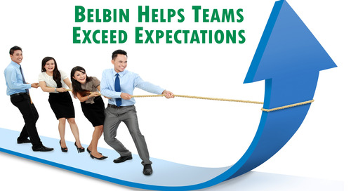 The Top 5 Ways Belbin Will Help Your Team Exceed Expectations