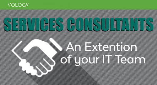 Services Consultants: An Extension of your IT Team
