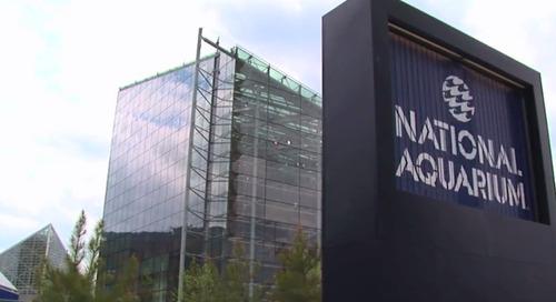 National Aquarium Reigns in Spending
