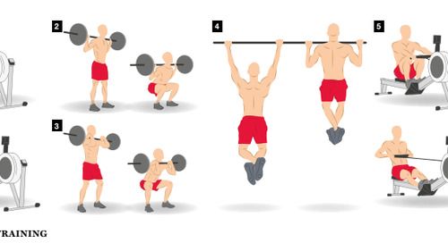 Building Muscles for Fitness