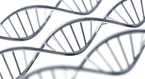 Validity of Human Gene Patents