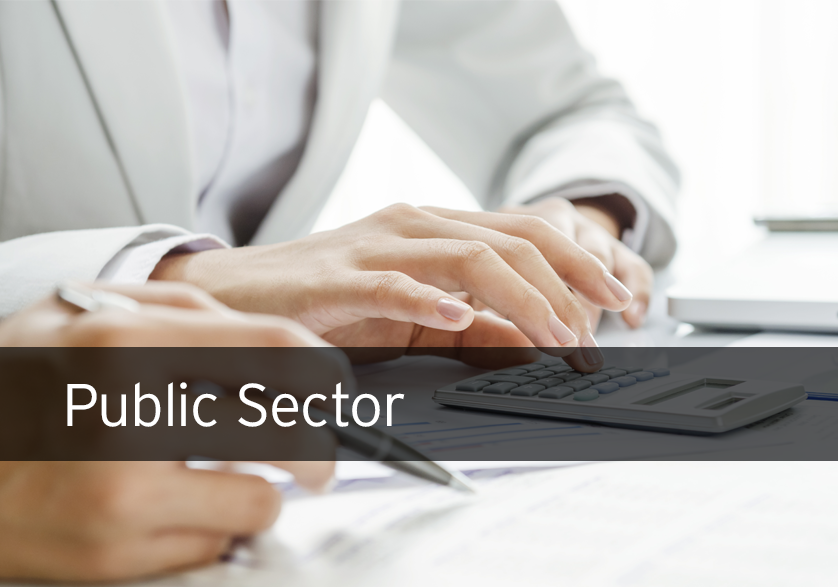 [Customer Story] Financial & Public Sector