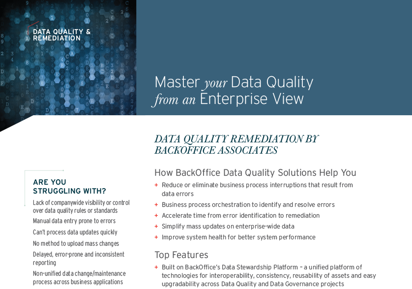 Data Quality and Remediation Overview
