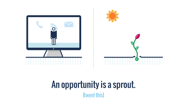 A lead is a seed and an opportunity is a sprout