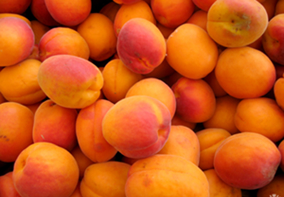 spa ingredient - apricots